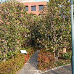恵比寿神社 参道入口