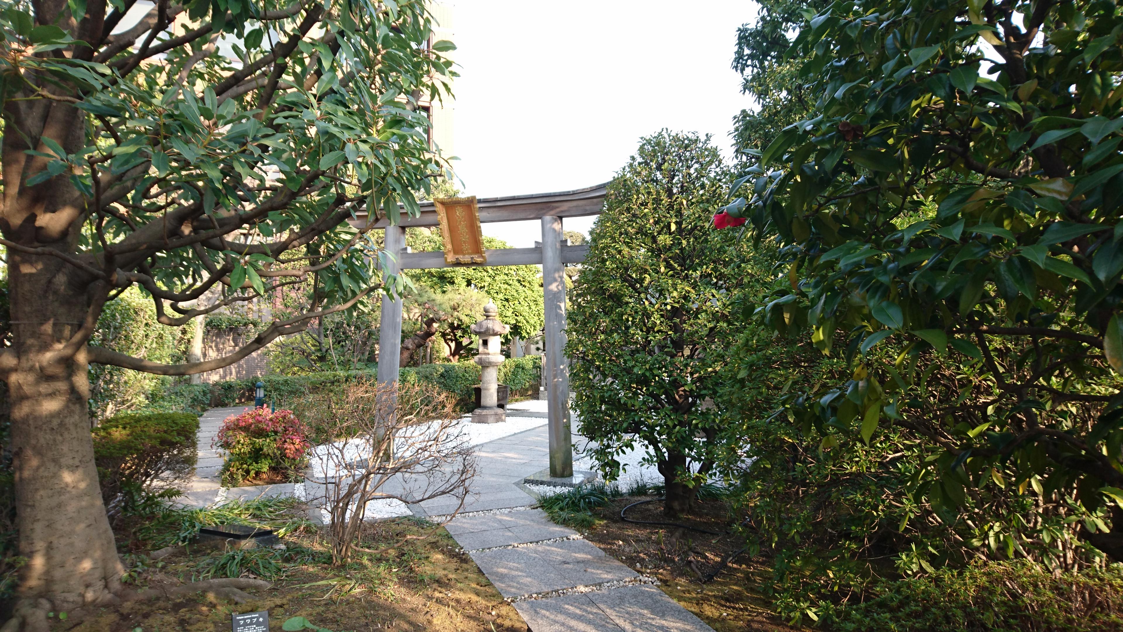 恵比寿神社 参道